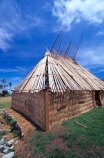 hut;huts;house;houses;housing;residence;thatch;thatching;roof;rooves;grass;flax;tradition;traditional;custom;customs;fijian;fiji;viti-levu;customary;build;building