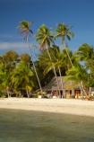 beach;beaches;beachfront-bure;beachfront-bures;bure;bures;coast;coastal;coastline;coastlines;coasts;Fij;Fiji;Fiji-Islands;foreshore;holiday;holiday-resort;holiday-resorts;holidays;Malolo-Lailai-Is;Malolo-Lailai-Island;Malololailai-Is;Malololailai-Island;Mamanuca-Group;Mamanuca-Is;Mamanuca-Island-Group;Mamanuca-Islands;Mamanucas;ocean;Pacific;Pacific-Island;Pacific-Islands;palm;palm-frond;palm-fronds;palm-tree;palm-trees;palms;Plantation-Is;Plantation-Is-Resort;Plantation-Island;Plantation-Island-Resort;resort;resort-hotel;resort-hotels;resorts;sand;sandy;sea;shore;shoreline;shorelines;shores;South-Pacific;tropical-island;tropical-islands;vacation;vacations;water;waterfront-bure;waterfront-bures