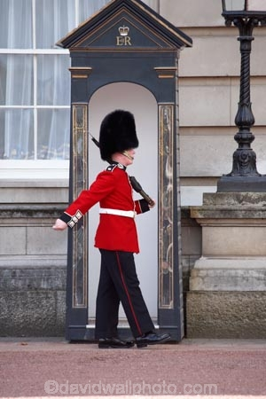 Bearskin-hat;Bearskin-hats;britain;British-Army;Buckingham-Palace;ceremonial;ceremony;england;Europe;Foot-Guard;G.B.;GB;great-britain;guard;guard-box;guard-boxes;guardbox;guardboxes;guards;infantry;kingdom;london;military;o8l4782;palace-guard;palace-guards;Queens-Guard;Queens-Life-Guard;Queens-guards;soldier;soldiers;U.K.;uk;uniform;uniforms;united;United-Kingdom