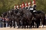 armour;armoured;Blues-and-Royals;Blues-and-Royals-Regiment;Britain;British-Army.;British-Household-Cavalry;cavalry;cavalry-regiment;ceremonial;Changing-of-the-Guards;Changing-of-the-Horse-Guards;England;equestrian;equine;Europe;G.B.;GB;Great-Britain;helmet;helmets;horse;Horse-Guard;Horse-Guards;Horse-Guards-Parade;horse-riding;horses;Household-Cavalry;Household-Cavalry-Mounted-Regiment;London;mounted-soldier;mounted-soldiers;Queens-Life-Guard;Queens-Life-Guards;row;rows;Royal-Horse-Guards;Royal-Horse-Guards-and-1st-Dragoons;The-Household-Cavalry-Mounted-Regiment;tradition;traditional;U.K.;UK;uniform;uniforms;United-Kingdom