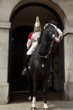 6608;armour;armoured;britain;British-Army.;British-Household-Cavalry;cavalry;cavalry-regiment;ceremonial;Changing-of-the-Guards;Changing-of-the-Horse-Guards;Cuirass;Cuirassier;england;equestrian;equine;Europe;G.B.;GB;great-britain;helmet;helmets;horse;Horse-Guard;Horse-Guards;horse-riding;horses;Household-Cavalry;Household-Cavalry-Mounted-Regiment;kingdom;Life-Guards-Regiment;london;mounted-soldier;mounted-soldiers;Queens-Life-Guard;Queens-Life-Guards;The-Household-Cavalry-Mounted-Regiment;tradition;traditional;U.K.;uk;uniform;uniforms;united;United-Kingdom;Whitehall