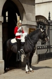 6629;armour;armoured;britain;British-Army.;British-Household-Cavalry;cavalry;cavalry-regiment;ceremonial;Changing-of-the-Guards;Changing-of-the-Horse-Guards;Cuirass;Cuirassier;england;equestrian;equine;Europe;G.B.;GB;great-britain;helmet;helmets;horse;Horse-Guard;Horse-Guards;horse-riding;horses;Household-Cavalry;Household-Cavalry-Mounted-Regiment;kingdom;Life-Guards-Regiment;london;mounted-soldier;mounted-soldiers;Queens-Life-Guard;Queens-Life-Guards;The-Household-Cavalry-Mounted-Regiment;tradition;traditional;U.K.;uk;uniform;uniforms;united;United-Kingdom;Whitehall