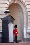 Bearskin-hat;Bearskin-hats;britain;British-Army;Buckingham-Palace;ceremonial;ceremony;england;Europe;Foot-Guard;G.B.;GB;great-britain;guard;guard-box;guard-boxes;guardbox;guardboxes;guards;infantry;kingdom;london;military;o8l4789;palace-guard;palace-guards;Queens-Guard;Queens-Life-Guard;Queens-guards;soldier;soldiers;U.K.;uk;uniform;uniforms;united;United-Kingdom