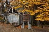 Argentina;Argentine-Patagonia;Argentine-Republic;autuminal;autumn;autumn-colour;autumn-colours;autumnal;beech;beech-tree;beech-trees;beeches;cabin;cabins;color;colors;colour;colours;deciduous;El-Chalten;fall;Glacier-National-Park;gold;golden;hiking-path;hiking-paths;hiking-trail;hiking-trails;hut;huts;Latin-America;leaf;leaves;lenga;lenga-beech;lengas;Los-Glaciares;Los-Glaciares-N.P.;Los-Glaciares-National-Park;Los-Glaciares-NP;national-park;national-parks;Northofagus;Northofagus-pumilio;NP;park;parks;Parque-Nacional-Los-Glaciares;Patagonia;Patagonian;path;paths;pathway;pathways;Rio-Blanco;Rio-Blanco-Hut;Rio-Blanco-shelter;route;routes;Santa-Cruz-Province;season;seasonal;seasons;shelter;shelters;South-America;South-Argentina;Southern-Argentina;southern-beech;southern-beeches;Sth-America;track;tracks;trail;trails;tramping-trail;tramping-trails;tree;trees;UN-world-heritage-area;UN-world-heritage-site;UNESCO-World-Heritage-area;UNESCO-World-Heritage-Site;united-nations-world-heritage-area;united-nations-world-heritage-site;walking-path;walking-paths;walking-trail;walking-trails;walkway;walkways;world-heritage;world-heritage-area;world-heritage-areas;World-Heritage-Park;World-Heritage-site;World-Heritage-Sites;yellow