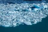 Argentina;Argentine-Patagonia;Argentine-Republic;Argentino-Lake;Canal-de-los-Tempanos;cold;glacial-calving;Glaciar-Perito-Moreno;glacier;Glacier-National-Park;glacier-terminus;glaciers;ice;iceberg;Iceberg-Channel;icebergs;icefield;icefields;icy;Lago-Argentino;Latin-America;Los-Glaciares;Los-Glaciares-N.P.;Los-Glaciares-National-Park;Los-Glaciares-NP;national-park;national-parks;NP;park;parks;Parque-Nacional-Los-Glaciares;Patagonia;Patagonian;Peninsula-Magellanes;Perito-Moreno;Perito-Moreno-Glacier;Santa-Cruz-Province;South-America;South-Argentina;Southern-Argentina;Sth-America;terminal-face;terminus;travel;UN-world-heritage-area;UN-world-heritage-site;UNESCO-World-Heritage-area;UNESCO-World-Heritage-Site;united-nations-world-heritage-area;united-nations-world-heritage-site;world-heritage;world-heritage-area;world-heritage-areas;World-Heritage-Park;World-Heritage-site;World-Heritage-Sites