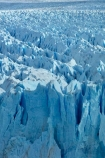 Argentina;Argentine-Patagonia;Argentine-Republic;blue-ice;cold;Glaciar-Perito-Moreno;glacier;glacier-face;Glacier-National-Park;glacier-terminal-face;glacier-terminus;glaciers;ice;icefield;icefields;icy;Latin-America;Los-Glaciares;Los-Glaciares-N.P.;Los-Glaciares-National-Park;Los-Glaciares-NP;national-park;national-parks;NP;park;parks;Parque-Nacional-Los-Glaciares;Patagonia;Patagonian;Perito-Moreno;Perito-Moreno-Glacier;Santa-Cruz-Province;South-America;South-Argentina;Southern-Argentina;Sth-America;terminal-face;terminus;travel;UN-world-heritage-area;UN-world-heritage-site;UNESCO-World-Heritage-area;UNESCO-World-Heritage-Site;united-nations-world-heritage-area;united-nations-world-heritage-site;world-heritage;world-heritage-area;world-heritage-areas;World-Heritage-Park;World-Heritage-site;World-Heritage-Sites