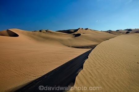 arid;desert;deserts;dune;dunes;Huacachina;Huacachina-Desert;Ica;Ica-Desert;Ica-Region;Latin-America;Peru;Peruvian-Desert;Republic-of-Peru;ripple;rippled;ripples;sand;sand-dune;sand-dunes;sand-hill;sand-hills;sand-ripple;sand-ripples;sand_dune;sand_dunes;sand_hill;sand_hills;sanddune;sanddunes;sandhill;sandhills;sandy;South-America;Sth-America