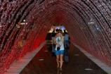 attraction;attractions;dark;dusk;El-Circuito-Magico-del-Agua;El-Circuito-Mágico-del-Agua;evening;fountain;fountain-complex;fountains;fuente;Fuente-de-la-Cupula-Visitable;fuentes;illuminate;illuminated;illuminated-fountain;illuminated-fountains;Latin-America;light;light-show;lighting;lights;Lima;Magic-Fountain;Magic-Water-Circuit;Magic-Water-Park;Magic-Water-Tour;magical;model-release;model-released;MR;night;night-time;night_time;orange;orange-light;park;Park-of-the-Reserve;parks;parque;Parque-de-la-Reserva;people;person;Peru;Peruvian;Republic-of-Peru;Reserve-Park;South-America;Sth-America;tourism;tourist-attraction;tourist-attractions;tourist-destination;travel;Tunnel;Tunnel-Fountain;Tunnel-Fountain-of-Surprises;Tunnel-Fountains;Tunnel-of-Surprises;Tunnel-of-Surprises-Fountain;Tunnels;twilight;water;water-park;water-parks;water-show