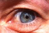 close-up;close-ups;close_up;close_ups;closeup;closeups;cornea;detail;details;eye;eyeball;eyeballs;eyelash;eyelashes;eyelid;eyelids;eyes;female;females;green;iris;look;looking;looks;pupil;pupils;sense;senses;sight;skin;socket;vision;watch;watches;watching;woman;women