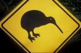bird;color;colors;colour;colours;driving;emblem;icon;icons;kiwi;Kiwi-icon;Kiwi-icons;kiwiana;logo;native;nature;new-zealand;road-sign;symbol;symbols;yellow
