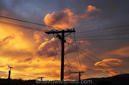 cloud;clouds;Dunedin;dusk;evening;line;lines;N.Z.;New-Zealand;nightfall;NZ;orange;Otago;pole;poles;post;posts;power-line;power-lines;power-pole;power-poles;S.I.;SI;skies;sky;South-Is.;South-Island;sunset;sunsets;telegraph-line;telegraph-lines;telegraph-pole;telegraph-poles;twilight;wire;wires