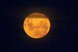 astronomy;dark;Dunedin;dusk;evening;full-moon;full-moons;lunar;lunar-perigee;moon;moon-surface;moonrise;moons;N.Z.;New-Zealand;night;night-time;night_time;NZ;Otago;S.I.;SI;South-Is;South-Is.;South-Island;space;star-gazing;Sth-Is;supermoon;yellow-moon;yellow-moons