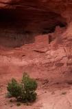 abandon;abandoned;America;American-Southwest;Anasazi-dwelling;Anasazi-ruin;Anasazi-ruins;Anasazi-site;Anasazi-sites;Ancestral-Pueblo-peoples;ancient-Anasazi-cliff-dwelling;ancient-cliff-dwellers;ancient-Native-American-culture;Ancient-Pueblo-peoples;Ancient-Puebloans;Arizona;AZ;building;buildings;character;cliff;cliff-dwelling;cliff-dwellings;cliffs;Colorado-Plateau;Colorado-Plateau-Province;derelict;derelict-building;dereliction;deserted;desolate;desolation;destruction;heritage;historic;historic-building;historic-buildings;Historic-Ruins;historical;historical-building;historical-buildings;history;Monument-Valley;Monument-Valley-Navajo-Tribal-Park;Mystery-Valley;Navajo-Indian-Reservation;Navajo-Nation;Navajo-Nation-Reservation;Navajo-Reservation;neglect;neglected;old;old-fashioned;old_fashioned;Oljato;Oljato-Monument-Valley;Oljato_Monument-Valley;rock-overhang;rock-overhangs;ruin;ruins;run-down;rustic;South-west-United-States;South-west-US;South-west-USA;South-western-United-States;South-western-US;South-western-USA;Southwest-United-States;Southwest-US;Southwest-USA;Southwestern-United-States;Southwestern-US;Southwestern-USA;Square-House-Ruin;Square-House-Ruins;States;the-Southwest;tradition;traditional;Tsé-Bii-Ndzisgaii;U.S.A;United-States;United-States-of-America;USA;UT;Utah;valley-of-the-rocks;vintage