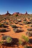 America;American-Southwest;Arizona;AZ;Big-Indian;Brigham's-Tomb;butte;buttes;Castle-Rock;Colorado-Plateau;Colorado-Plateau-Province;desert-vegetation;geological;geology;King-on-his-throne;Monument-Valley;Monument-Valley-Navajo-Tribal-Park;natural-geological-formation;natural-geological-formations;Navajo-Indian-Reservation;Navajo-Nation;Navajo-Nation-Reservation;Navajo-Reservation;Oljato;Oljato-Monument-Valley;Oljato_Monument-Valley;rock;rock-formation;rock-formations;rock-outcrop;rock-outcrops;rock-tor;rock-torr;rock-torrs;rock-tors;rocks;Saddleback;South-west-United-States;South-west-US;South-west-USA;South-western-United-States;South-western-US;South-western-USA;Southwest-United-States;Southwest-US;Southwest-USA;Southwestern-United-States;Southwestern-US;Southwestern-USA;States;stone;The-Castle;the-Southwest;Tsé-Bii-Ndzisgaii;U.S.A;United-States;United-States-of-America;unusual-natural-feature;unusual-natural-features;unusual-natural-formation;unusual-natural-formations;USA;UT;Utah;valley-of-the-rocks;wilderness;wilderness-area;wilderness-areas