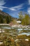 America;American;brook;brooks;CA;California;clean-water;clear-water;creek;creeks;Eastern-Sierra;Mono-County;mountain-stream;river;rivers;Shingle-Mill-Flat-Day-Use-Area;Shingle-Mill-Flat-Picnic-Area;Shingle-Mill-Flat-Picnic-Site;Shingle-Mill-Flat-Rest-Area;Shingle-Mill-Flat-Rest-Site;States;stream;streams;U.S.-Highway-395;U.S.A;United-States;United-States-of-America;USA;Walker;Walker-River;Walker-River-Canyon;water;West-Coast;West-United-States;West-US;West-USA;West-Walker-River;Western-United-States;Western-US;Western-USA