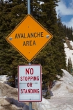 10,640-ft;3243-m;America;American-Southwest;avalanche-area-sign;CO;Coal-Bank-Pass;cold;Colorado;Colorado-Plateau;Colorado-Plateau-Province;Colorado-Scenic-and-Historic-Byway-System;forest;forests;Million-Dollar-Highway;mountain-pass;mountain-passes;no-stopping-sign;no-stopping-signs;road-sign;road-signs;Rocky-Mountains;San-Juan-Mountains;San-Juan-National-Forest;San-Juan-Skyway;San-Juan-Skyway-Scenic-Byway;sign;signs;snow;snowy;South-west-United-States;South-west-US;South-west-USA;South-western-United-States;South-western-US;South-western-USA;Southwest-United-States;Southwest-US;Southwest-USA;Southwestern-United-States;Southwestern-US;Southwestern-USA;States;summit;summits;the-Southwest;U.S.-Highway-550;U.S.A;United-States;United-States-of-America;US-550;USA;warning-sign;warning-signs;winter;wood;woods