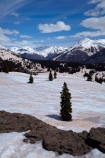 10,910-ft;3325-m;America;American-Southwest;CO;cold;Colorado;Colorado-Plateau;Colorado-Plateau-Province;Colorado-Scenic-and-Historic-Byway-System;forest;forests;lookout;lookouts;Million-Dollar-Highway;Molas-Pass;mountain-pass;mountain-passes;overlook;Rocky-Mountains;San-Juan-Mountains;San-Juan-National-Forest;San-Juan-Skyway;San-Juan-Skyway-Scenic-Byway;snow;snowy;South-west-United-States;South-west-US;South-west-USA;South-western-United-States;South-western-US;South-western-USA;Southwest-United-States;Southwest-US;Southwest-USA;Southwestern-United-States;Southwestern-US;Southwestern-USA;States;The-Colorado-Trail;the-Southwest;U.S.-Highway-550;U.S.A;United-States;United-States-of-America;US-550;USA;view;viewpoint;viewpoints;views;winter;wood;woods