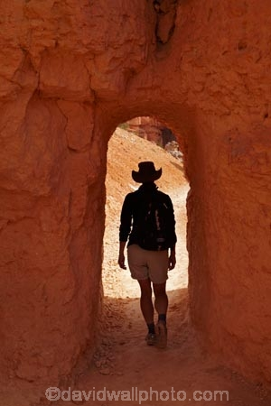America;American-Southwest;Bryce-Amphitheater;Bryce-Amphitheatre;Bryce-Canyon;Bryce-Canyon-N.P.;Bryce-Canyon-National-Park;Bryce-Canyon-NP;hiker;hikers;hiking-path;hiking-paths;hiking-track;hiking-tracks;hiking-trail;hiking-trails;national-park;national-parks;path;paths;pathway;pathways;Paunsaugunt-Plateau;people;person;Queens-Garden-Path;Queens-Garden-Trackl;Queens-Garden-Trail;Queens-Garden-walk;Queens-Garden-Path;Queens-Garden-Track;Queens-Garden-Trail;Queens-Garden-walk;route;routes;South-west-United-States;South-west-US;South-west-USA;South-western-United-States;South-western-US;South-western-USA;Southwest-United-States;Southwest-US;Southwest-USA;Southwestern-United-States;Southwestern-US;Southwestern-USA;States;the-Southwest;tourism;tourist;tourists;track;tracks;trail;trails;tramping-track;tramping-tracks;tramping-trail;tramping-trails;tunnel;tunnels;U.S.A;United-States;United-States-of-America;USA;UT;Utah;walker;walkers;walking-path;walking-paths;walking-track;walking-tracks;walking-trail;walking-trails;walkway;walkways;MR;Model-Release