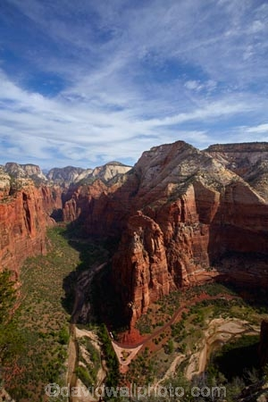 America;American-Southwest;Angels-Landing;Angels-Landing;Angels-Landing-track;Angels-Landing-trail;Angel's-Landing;Angel's-Landing-track;Angel's-Landing-trail;Big-Bend;bluff;bluffs;bus;buses;canyon;canyons;cliff;cliffs;coach;coaches;Floor-of-the-Valley-Rd;Floor-of-the-Valley-Road;gorge;gorges;hiking-path;hiking-paths;hiking-track;hiking-tracks;hiking-trail;hiking-trails;lookout;lookouts;motorbus;motorbuses;national-parks;Observation-Point;omnibus;omnibuses;overlook;passenger-bus;passenger-buses;passenger-coach;passenger-coaches;passenger-transport;path;paths;pathway;pathways;public-transport;public-transportation;route;routes;shuttle-bus;shuttle-buses;South-west-United-States;South-west-US;South-west-USA;South-western-United-States;South-western-US;South-western-USA;Southwest-United-States;Southwest-US;Southwest-USA;Southwestern-United-States;Southwestern-US;Southwestern-USA;States;street-scene;street-scenes;the-Southwest;tour-bus;tour-buses;tour-coach;tour-coaches;track;tracks;trail;trails;tramping-track;tramping-tracks;tramping-trail;tramping-trails;transportation;U.S.A;United-States;United-States-of-America;USA;UT;Utah;view;viewpoint;viewpoints;views;Virgin-River;walking-path;walking-paths;walking-track;walking-tracks;walking-trail;walking-trails;walkway;walkways;Zion;Zion-Canyon;Zion-Canyon-Road;Zion-Canyon-Scenic-Drive;Zion-N.P.;Zion-National-Park;Zion-NP;Zion-shuttle-bus;Zion-shuttle-buses