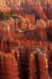 America;American-Southwest;badland;badlands;Bryce-Amphitheater;Bryce-Amphitheatre;Bryce-Canyon;Bryce-Canyon-N.P.;Bryce-Canyon-National-Park;Bryce-Canyon-NP;clay;column;columns;earth-pyramid;earth-pyramids;eroded;erosion;fairy-chimney;fairy-chimneys;formation;formations;geological;geology;hiker;hikers;hiking-path;hiking-paths;hiking-track;hiking-tracks;hiking-trail;hiking-trails;hoodoo;hoodoos;Inspiration-Point;layer;layers;lookout;lookouts;national-park;national-parks;natural-geological-formation;natural-geological-formations;natural-tower;natural-towers;Navajo-Loop;Navajo-Loop-path;Navajo-Loop-track;Navajo-Loop-trail;Navajo-Loop-walk;Navajo-path;Navajo-track;Navajo-trail;Navajo-walk;North-America;overlook;path;paths;pathway;pathways;Paunsaugunt-Plateau;people;person;pillar;pillars;pinnacle;pinnacles;rock;rock-chimney;rock-chimneys;rock-column;rock-columns;rock-formation;rock-formations;rock-pillar;rock-pillars;rock-pinnacle;rock-pinnacles;rock-spire;rock-spires;rock-tower;rock-towers;rocks;route;routes;Sandstone;South-west-United-States;South-west-US;South-west-USA;South-western-United-States;South-western-US;South-western-USA;Southwest-United-States;Southwest-US;Southwest-USA;Southwestern-United-States;Southwestern-US;Southwestern-USA;States;stone;Sunset-Point;tent-rock;tent-rocks;the-Southwest;tourism;tourist;tourists;track;tracks;trail;trails;tramping-track;tramping-tracks;tramping-trail;tramping-trails;U.S.A;United-States;United-States-of-America;unusual-natural-feature;unusual-natural-features;unusual-natural-formation;unusual-natural-formations;USA;UT;Utah;view;viewpoint;viewpoints;views;walker;walkers;walking-path;walking-paths;walking-track;walking-tracks;walking-trail;walking-trails;walkway;walkways;weathered;weathering;wilderness;wilderness-area;wilderness-areas